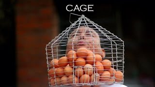 Performance Art (Cage) By Prithvi Shrestha