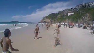 Dog plays beach ball / Собака играет в пляжный волейбол