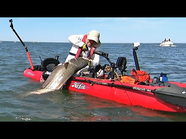 Adrenaline 26kg (57lbs) Corvina (Mulloway) - Extreme Kayak Fishing -1080HD 50fps