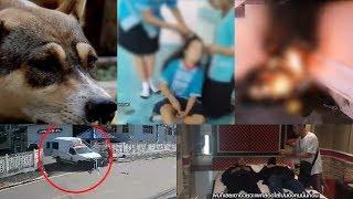 เรื่องเล่าหน้าหนึ่ง 12 ต.ค.61 หุ้นไทยแดงทั้งกระดาน-นักโทษปล้นรถเรือนจำ-พรบ.หมาแมว