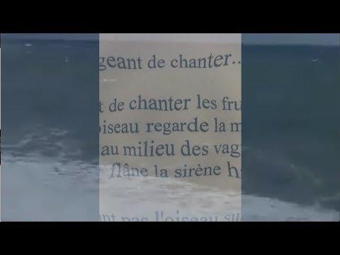 Vidéo de Pierre Thiry