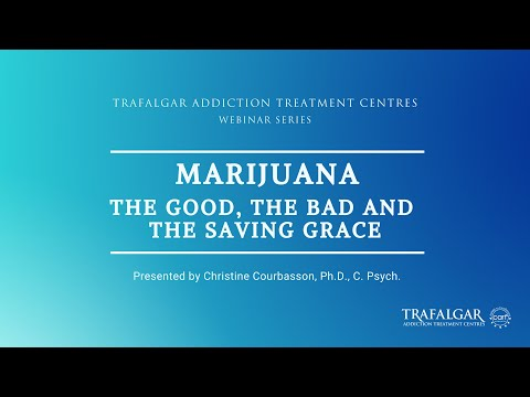 The cover picture for the video of the Webinar The Marijuana The Good The Bad and the Saving Grace.