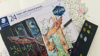 Besondere Stifte? - Staedtler Super Soft Colored Pencil - Buntstift Review
