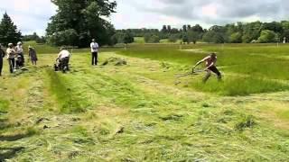 Qual corta mais rápido? A foice ou o cortador de grama? O final vai surpreender