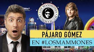 GOLAZO! cantante de VILMA PALMA en vivo - LOS MAMMONES