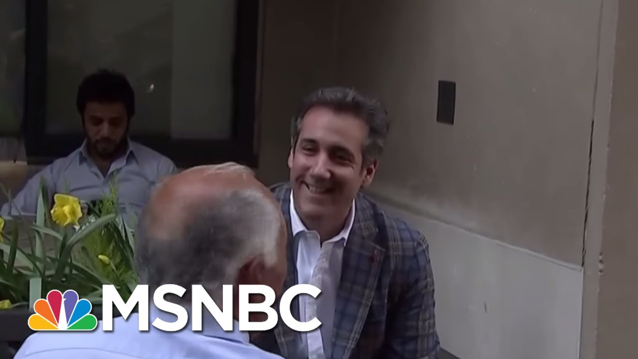 President Donald Trump Warned That Michael Cohen Would Flip If Charged | The Last Word | MSNBC thumbnail