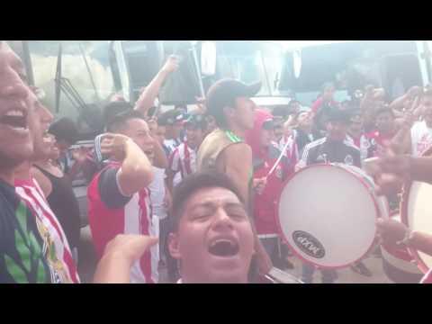 """""""Barra Insurgencia Estadio Cuauhtemoc Puebla 2016 Porra de Chivas"""" Barra: Barra Insurgencia • Club: Chivas Guadalajara"""