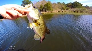 Bass Fishing on a New Lake in Texas