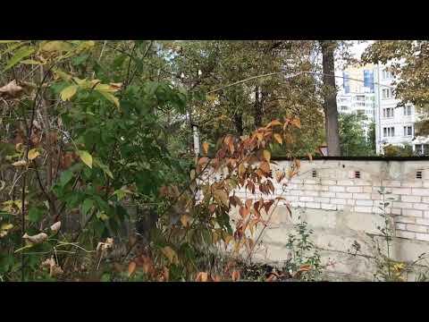#Земля под дом центр города#Дмитров#улица #Подьячева#свет#газ#вода#канализация #АэНБИ #недвижимость