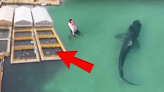 News Reporters Couldn't Believe What They Were Seeing When Drone Footage Exposed This Ocean's SECRET