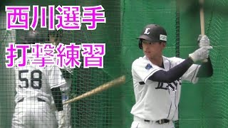 #51西川愛也選手の打撃練習西武ライオンズ、春野キャンプ2018
