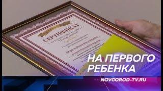 Новгородским родителям вручили сертификаты на областную материальную помощь «Первый ребёнок»