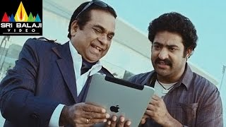 Shakti Movie Comedy Scenes Back To Back  NTR Ileana Brahmanandam  Sri Balaji Video