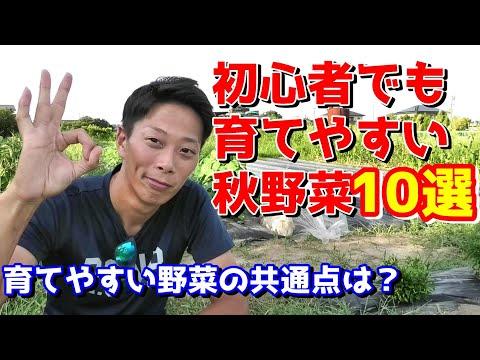 , title : '初心者でも育てやすい秋野菜10選 迷ったらこれ! 育てやすい野菜の条件は?