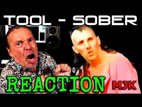 Vocal Coach Reaction To - Tool-Sober - Ken Tamplin