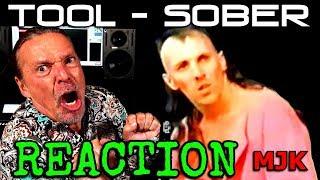 Vocal Coach Reaction To   Tool Sober   Ken Tamplin