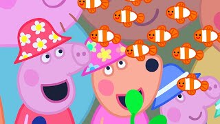 Peppa Pig Official Channel   Peppa Pig Loves the Great Barrier Reef
