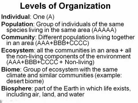 Levels of Ecological Organization ( Read ) | Life Science | CK-12 ...