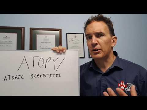 Se é possível ir na dermatite atopic sobre um banho