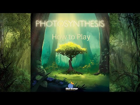 How to Play: Photosynthesis