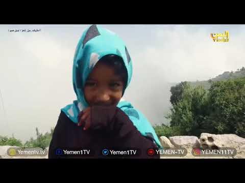 Photo of تعز ترنيمة الحياة وسيفونية جمال لايوصف