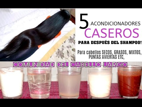 *5 ACONDICIONADORES CASEROS para después del shampoo!*cabellos secos, grasos, mixtos...