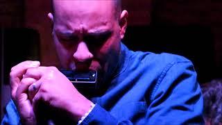 La star de l'harmonica est de retour au festival de jazz - video (1)