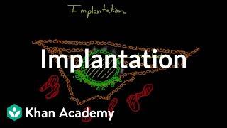 Implantation | Behavior | MCAT | Khan Academy
