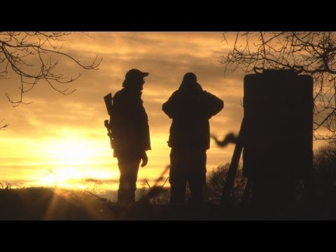 Fieldsports Britain – Night vision, quick duck and the Browning B725