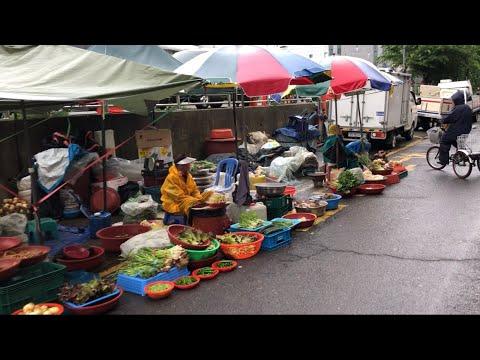 Cuộc sống Hàn Quốc:|Tập 127| MUA GIÚP RAU CHO BÀ CỤ NGÀY CHỢ MƯA CHIỀU.비오는 장날에 할머니 파시는 채소를 사 드리기.