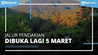 Kabar Gembira, Pendakian Gunung Gede Pangrango Dibuka Lagi 5 Maret 2021