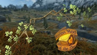 Skyrim Mod of the day: Nature Bow SSE