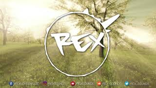 ILVS x Jordy Wess – Stars 👑 Rex Sounds