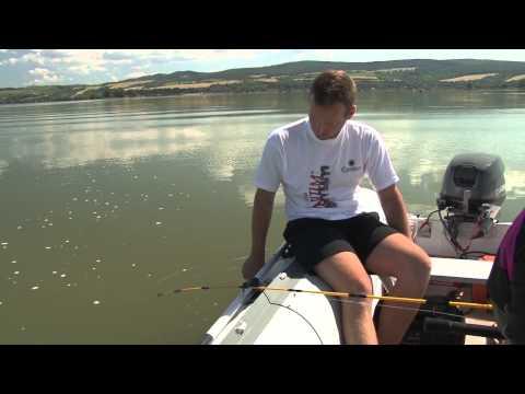 Ryby, rybky, rybičky – 15/2014, premiéra 18.7.2014