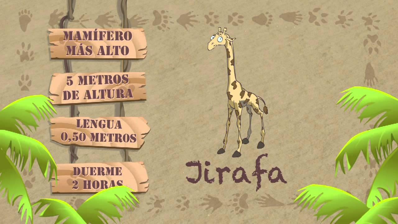 Las características de la JIRAFA