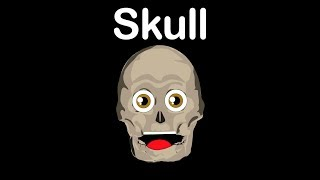 Human Body for Kids/Skull Bones/Skull Song
