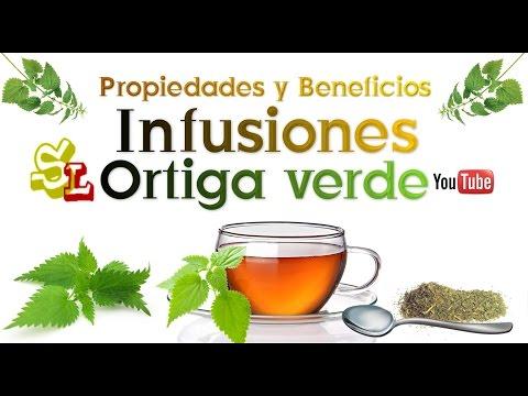 El té por el jengibre del adelgazamiento de la contraindicación