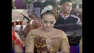 Sigro Mangsa - Ojo Dipleroki - Ngunduh Layangan -salam Pambuko Versi SANGKURIANG Live In Bulurejo