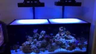 HOW TO- SLEEK DIY LIGHT MOUNTS FOR 165w full spectrum LEDS