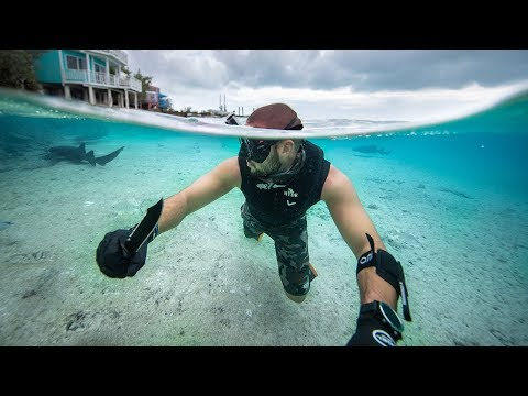 Spearfishing Beautiful REMOTE Island For SURVIVAL!!! (Shark feeding)