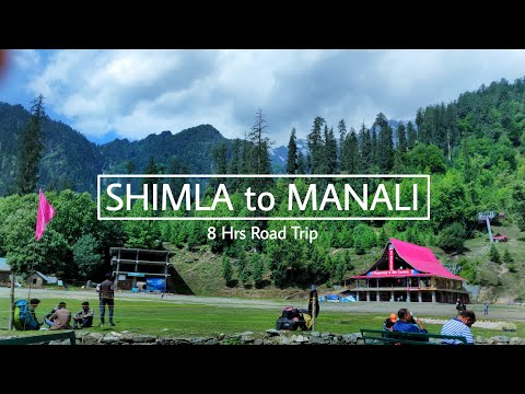 SHIMLA TO MANALI | 8 HRS ROAD TRIP | Travel & Food Vlog | Kurly Kolos