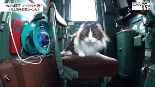 Vol.22「にゃん旅鉄道」運転手へ転身にゃ!?
