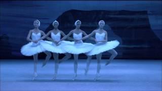 LABUTÍ JEZERO Bolšoj balet - ukázka 1