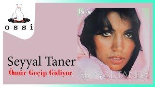 Seyyal Taner / Ömür Geçip Gidiyor (Renkler)