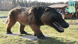 TOP 10 Increíbles Animales Extintos Que Afortunadamente No Existen || Parte1 ||