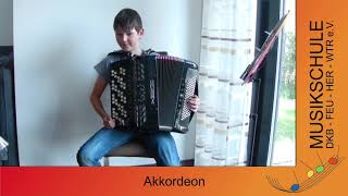 Musikschule Akkordeon