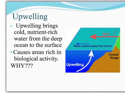 Oceanography (Earth Science)