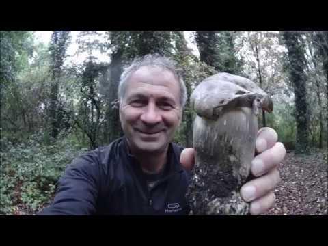 Trattamento di yodinol di un fungo di piedi