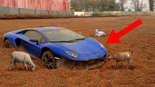 CRAZIEST Abandoned Vehicles Discovered!