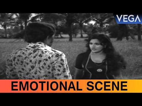 MG Soman Tells The Truth To Bhavani || Kalpavriksham Movie Scene